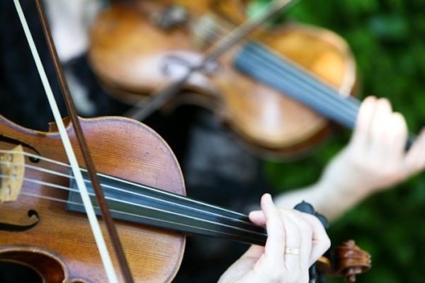 String Ensembles: Your Napa Valley Wedding Music